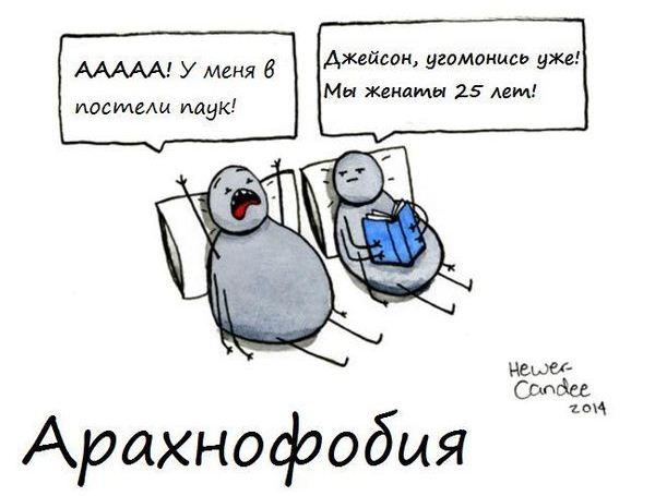 Арахнофобия (картинка с юмором)