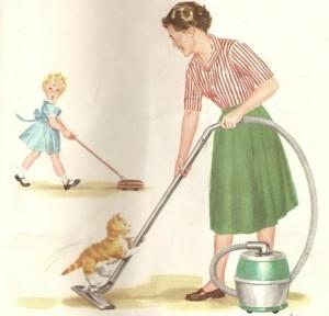 Обязательная уборка помещений не даст блохам появиться у вас дома
