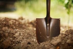 Глубокая осенняя перекопка почвы обеспечит слизнякам гибель