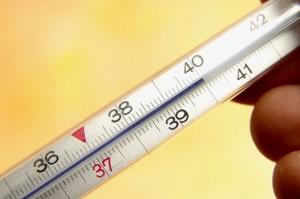 Высокая температура может быть реакцией на укус