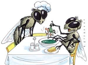 Как избавится от мух в квартире