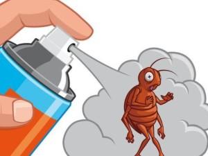 Использование инсектицидов самостоятельно