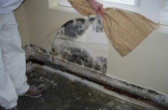 как избавиться от плесени на стенах в квартире своими руками средства